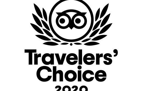 TC-Winner-500x500-199faf7